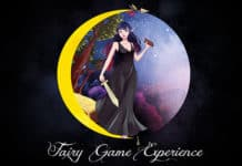 Fairy Game Experience