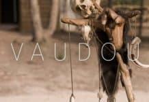 Antichambre - Vaudou