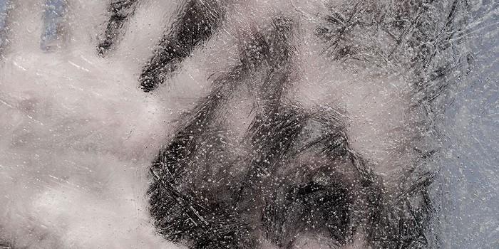 Weasel - coup de froid