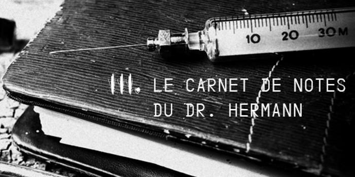 Terreur au bignon - Le Carnet de notes du Docteur Hermann